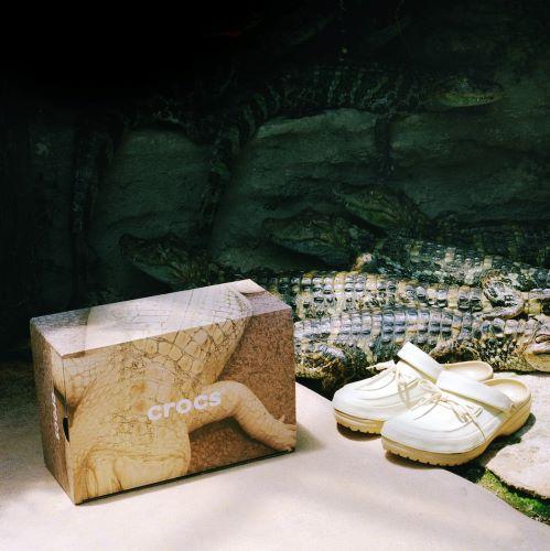 Hộp giày Crocs táo bạo